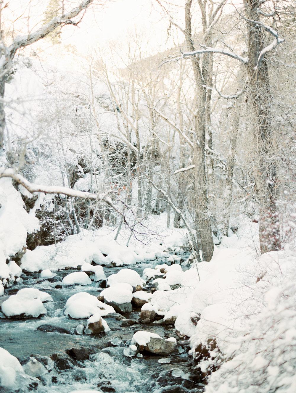 BellaCosa_WinterWonderland-54.jpg