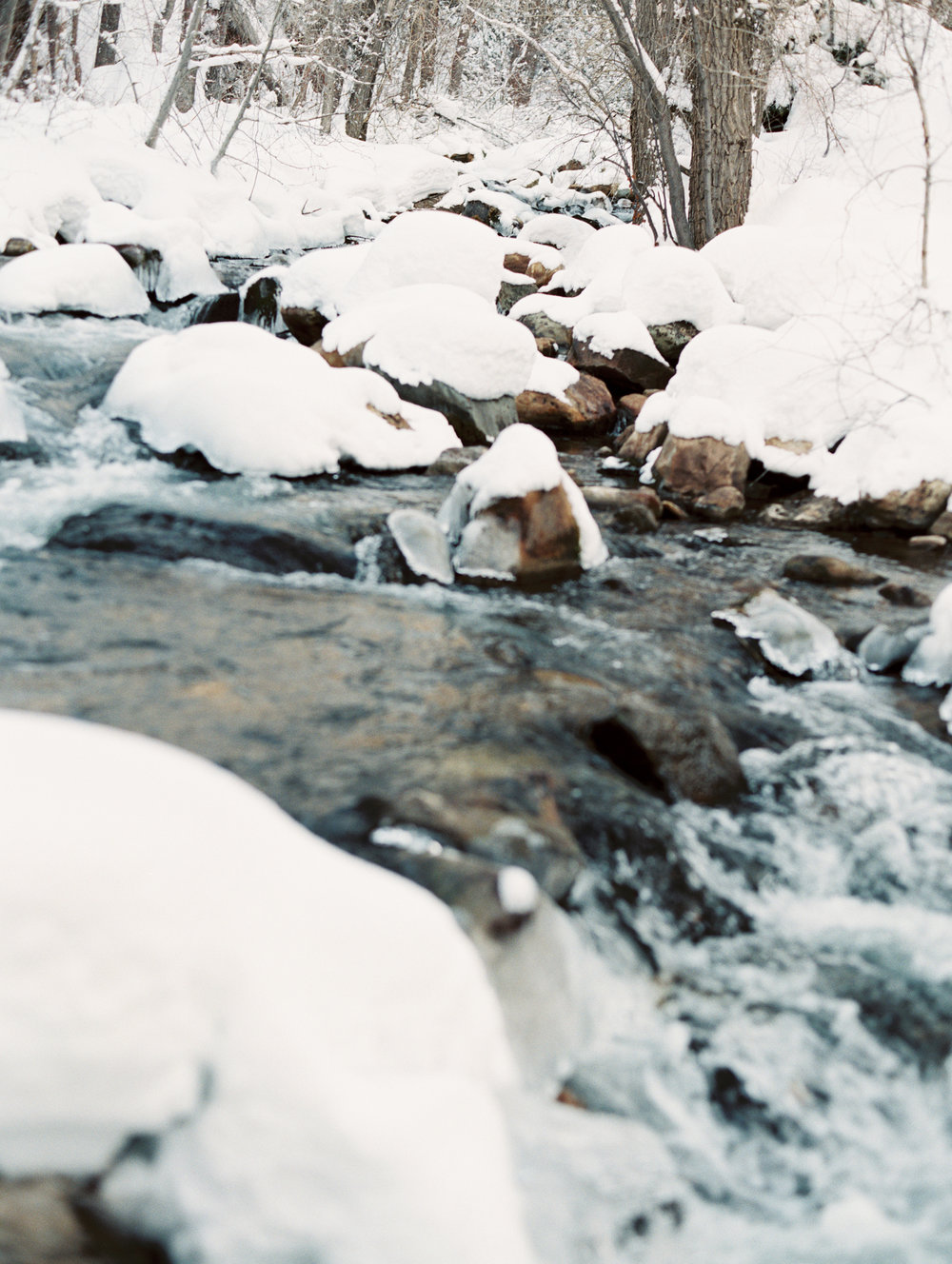 BellaCosa_WinterWonderland-186.jpg