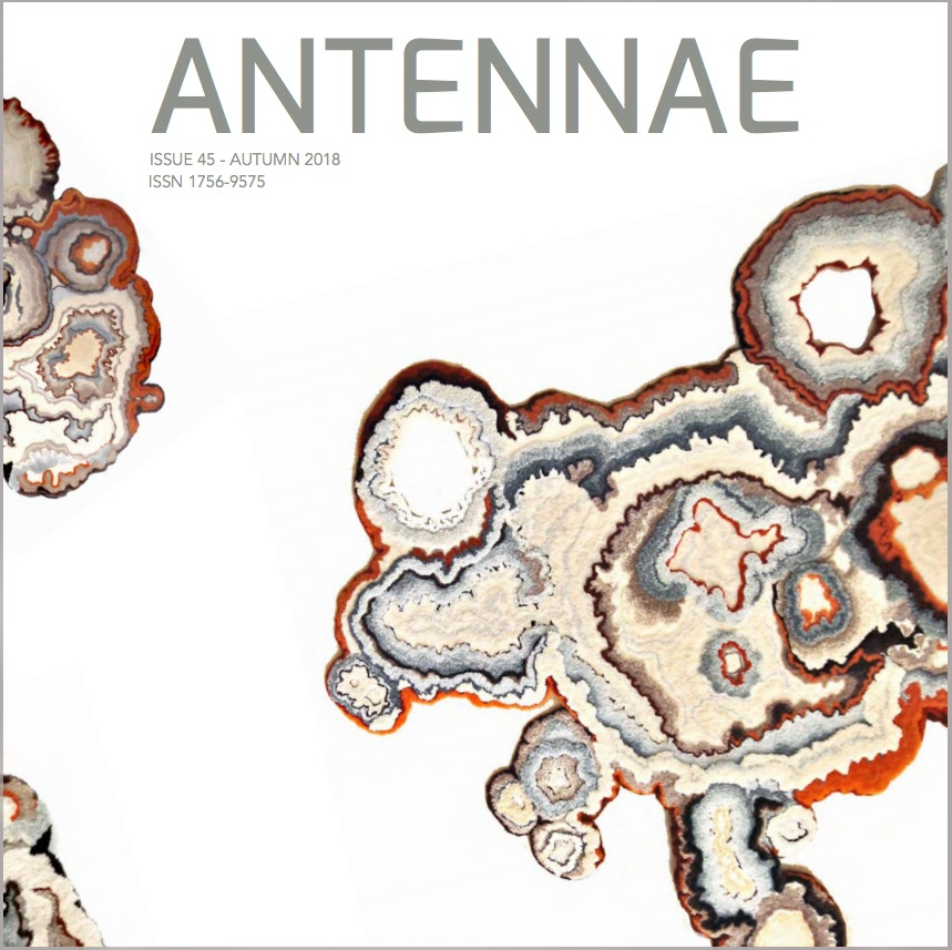 Matter Matters:  Lecanora Muralis    Swanson, Cole.  Lecanora Muralis,  Antennae: Journal of Nature in Visual Culture, No. 45. London, UK, 2018.  www.antennae.org.uk/home/4594152034