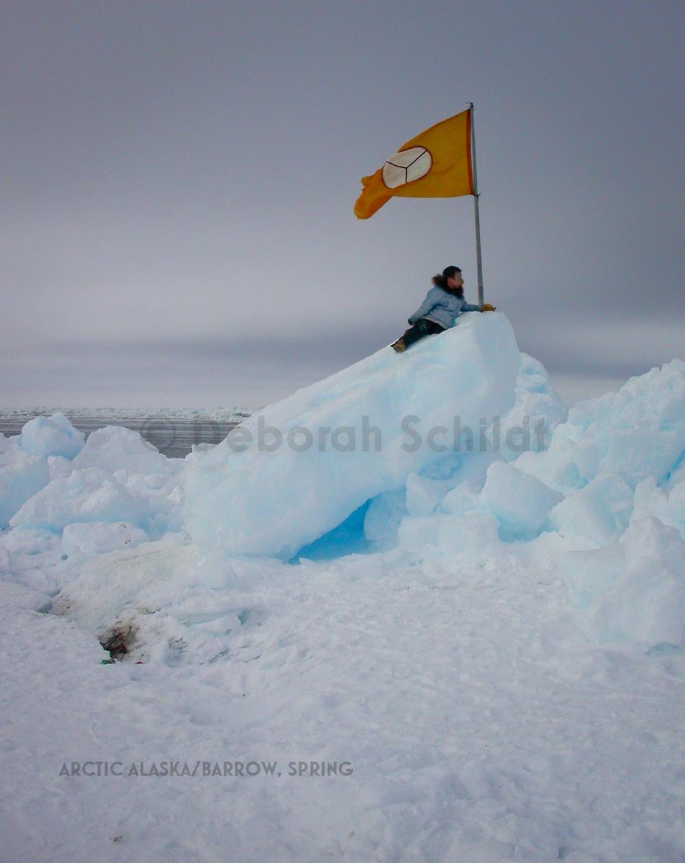 CT2. Arctic Alaska_ Barrow spring.jpg