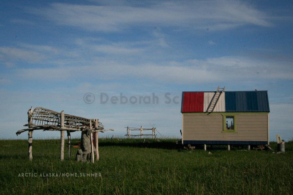 CT10. Arctic Alaska-Near Nome summer.jpg