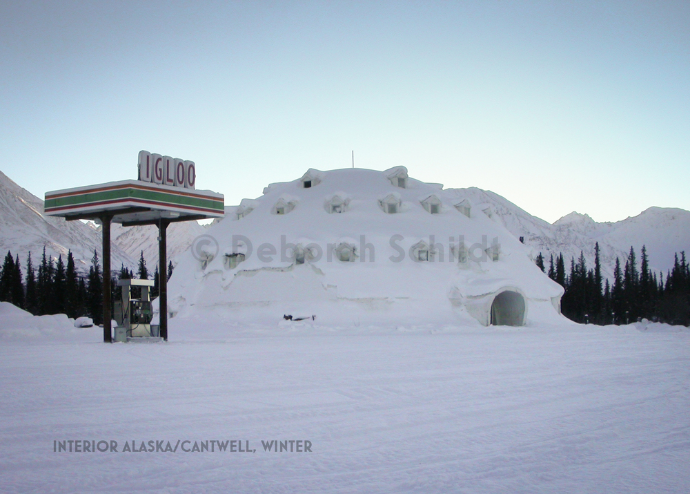 CT 2. Interior Alaska_Cantwell_ winter.jpg