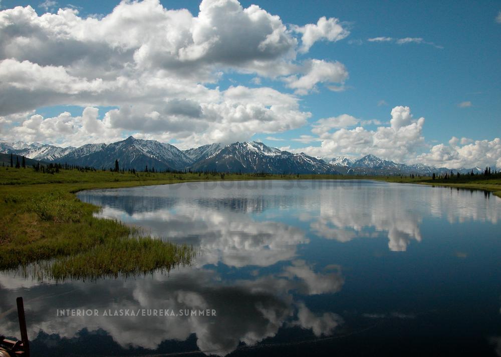 CT 8. Interior Alaska-Eureka_ summer.jpg