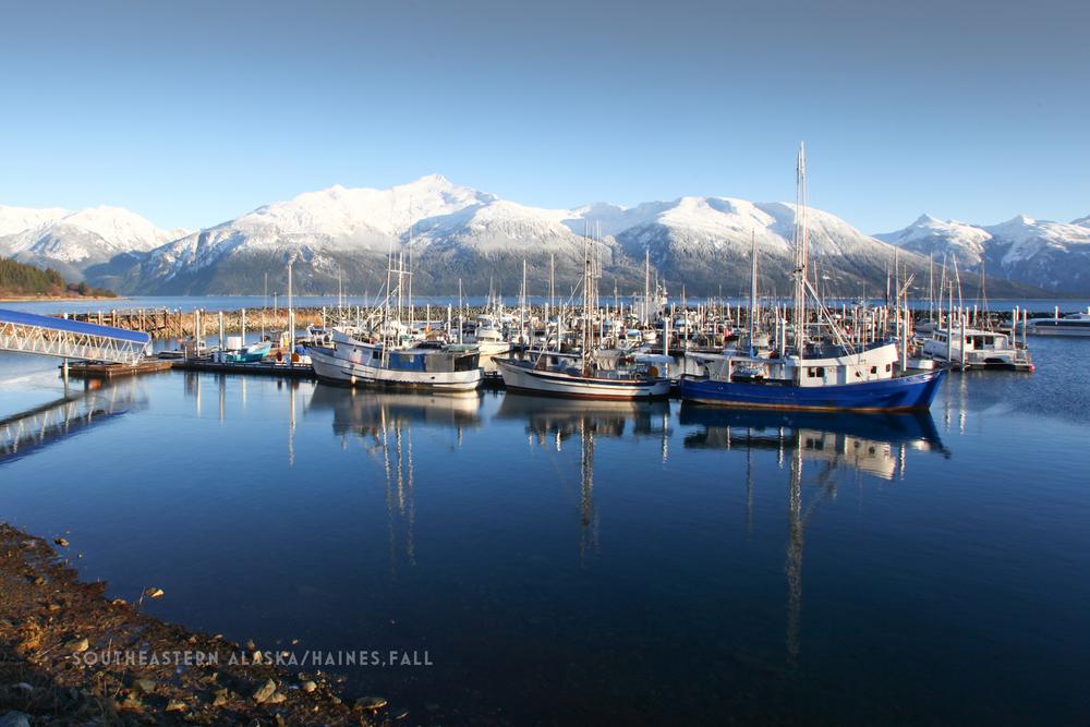 CT3 South East Alaska-Haines_ fall.jpg