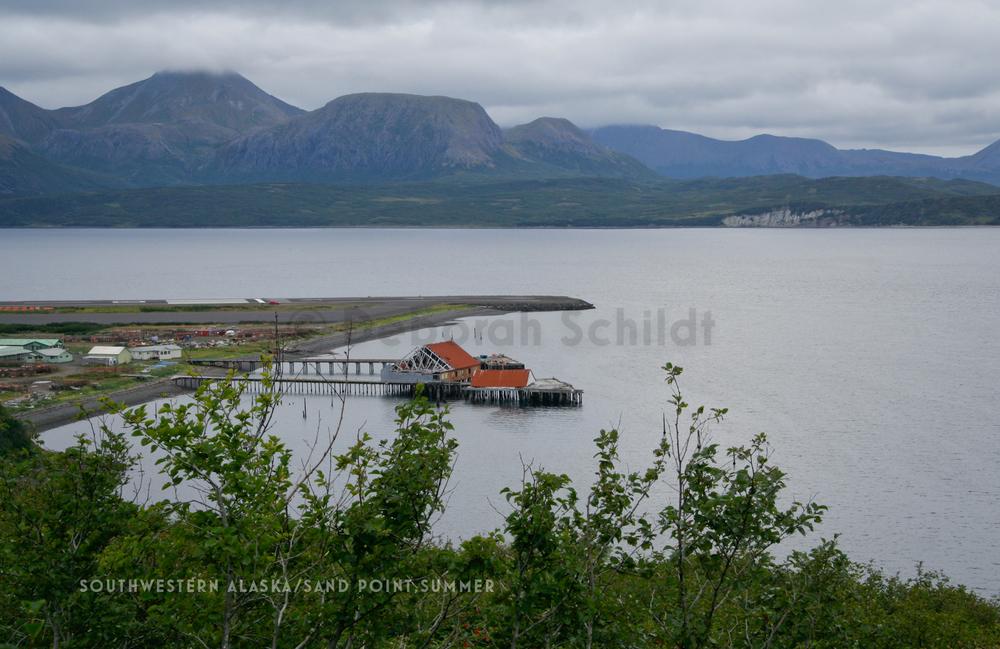 CT3 Southwestern Alaska-The Chain_ Sand Point_ late summer.jpg