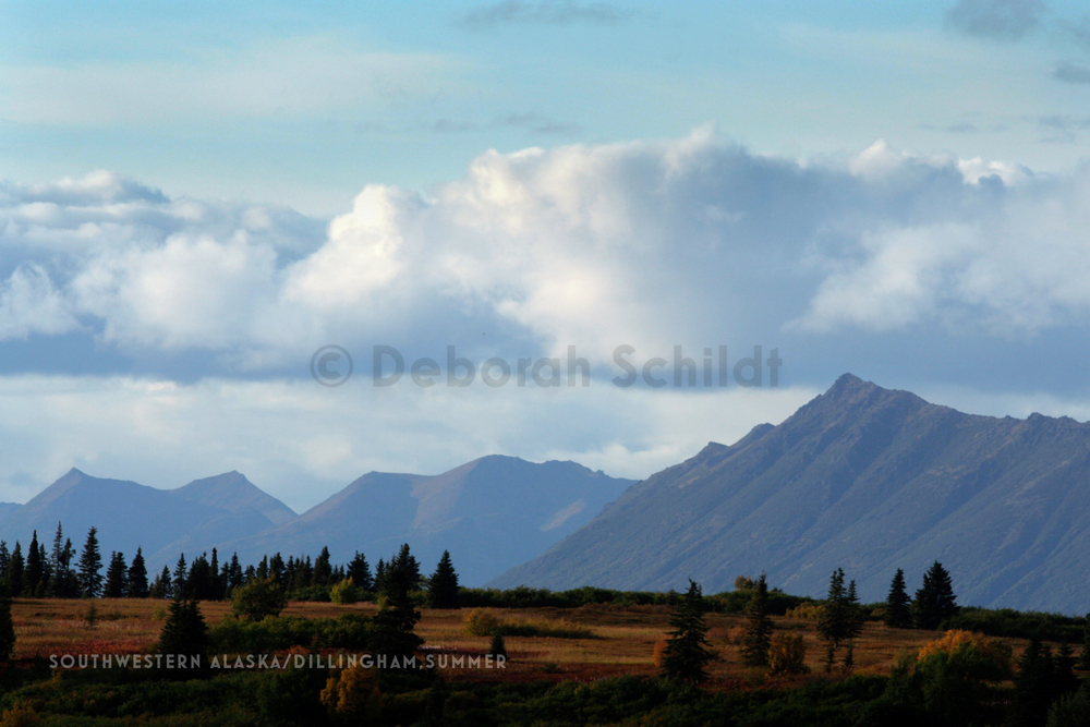 CT11.Southwestern Alaska-Dillingham_fall.jpg