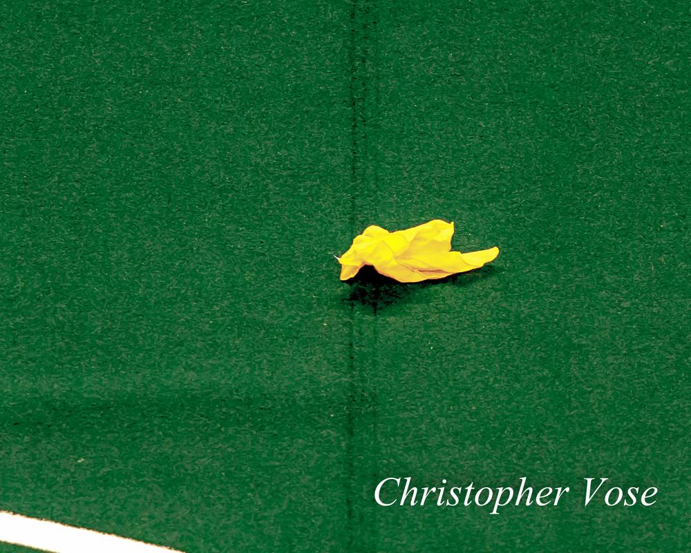 2014-01-11 Challenge Flag.jpg