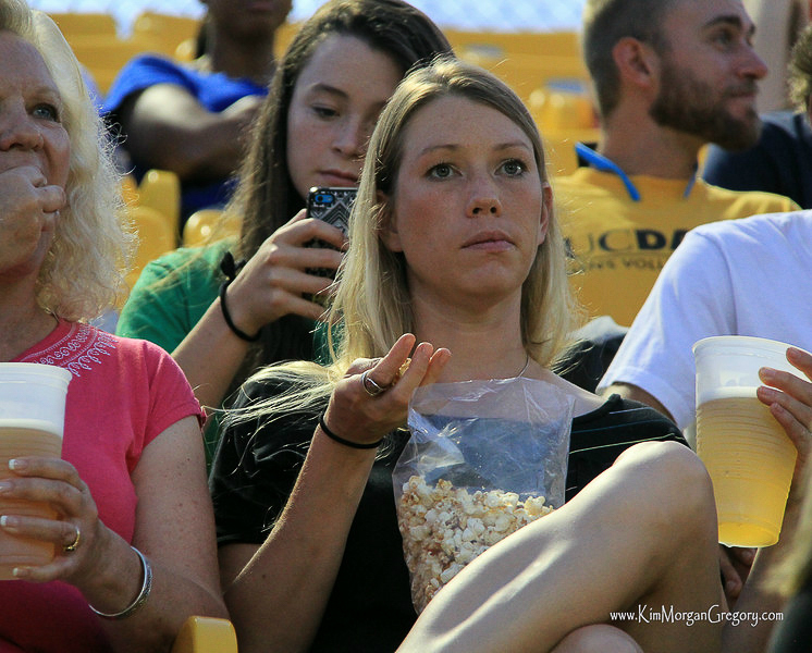 2014-07-12 Charleston Battery Supporter.jpg