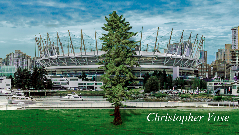 While we're not quite sure where they drew their inspiration for the Cascadia Flag, somehow, it seems familiar to us at BC Place.