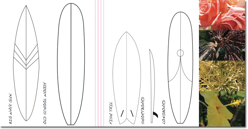 surf13.jpg