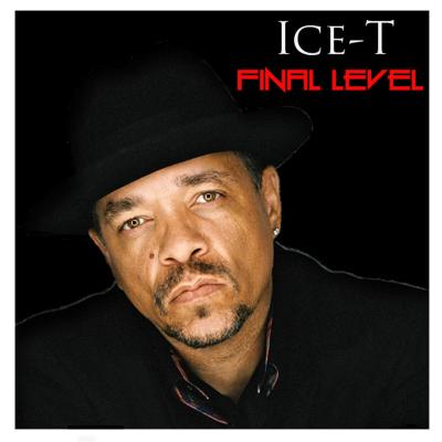 Final Level Logo Website.png