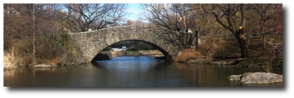 Bridge in Central Park, NYC