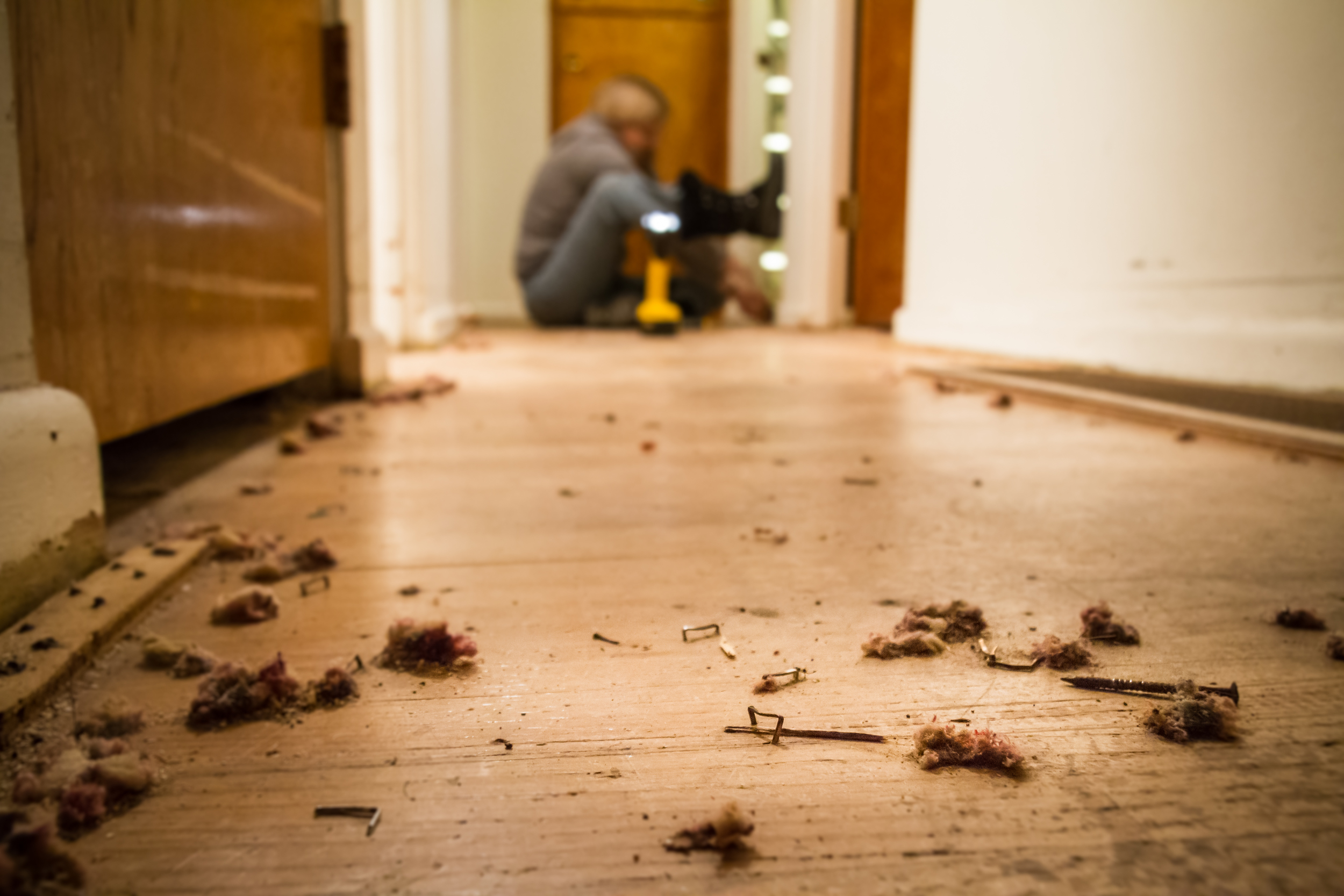 How to remove carpet tack strips from wood floors for Removing hardwood floors