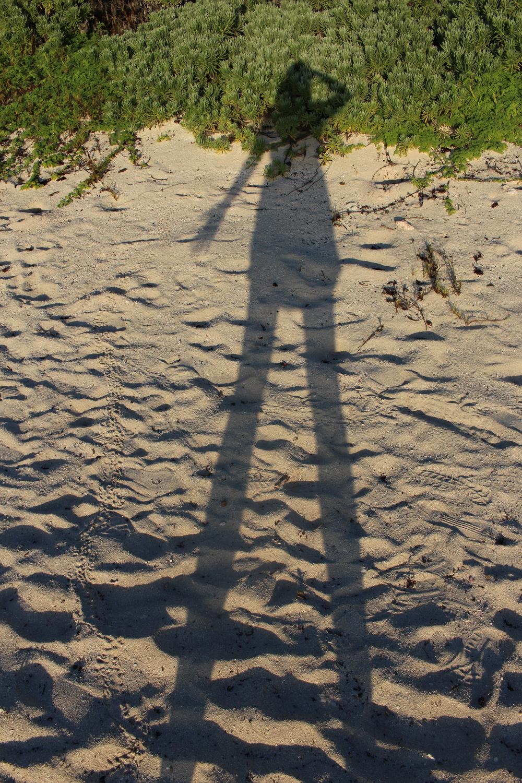 Self portrait in the morning sun. Loooong legs.
