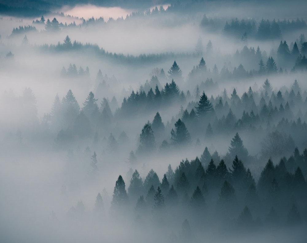 BO16 - 2016-12-24 - Fog - 195840.jpg