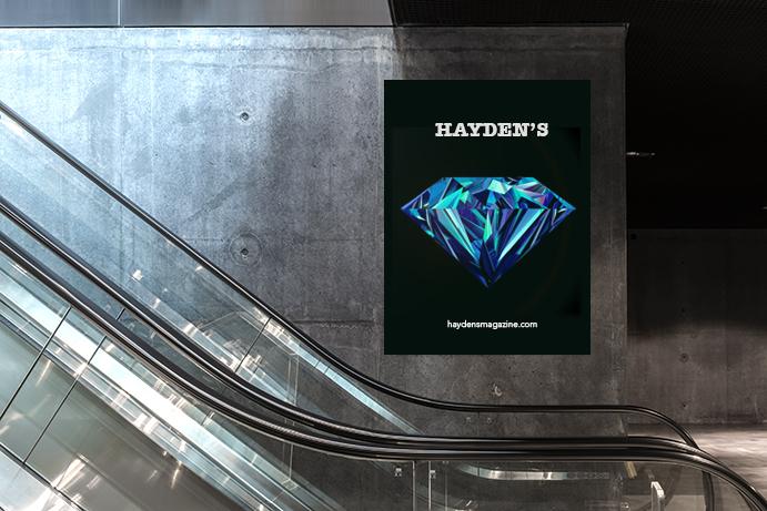 Haydens_elevator
