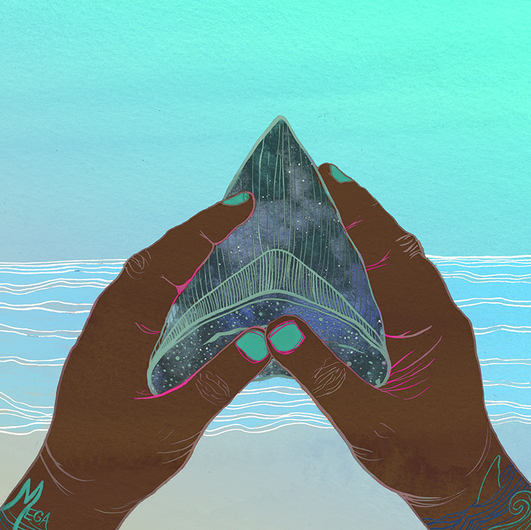This one was inspired by people finding big fossilized Megalodon shark teeth on  North Carolina beaches.