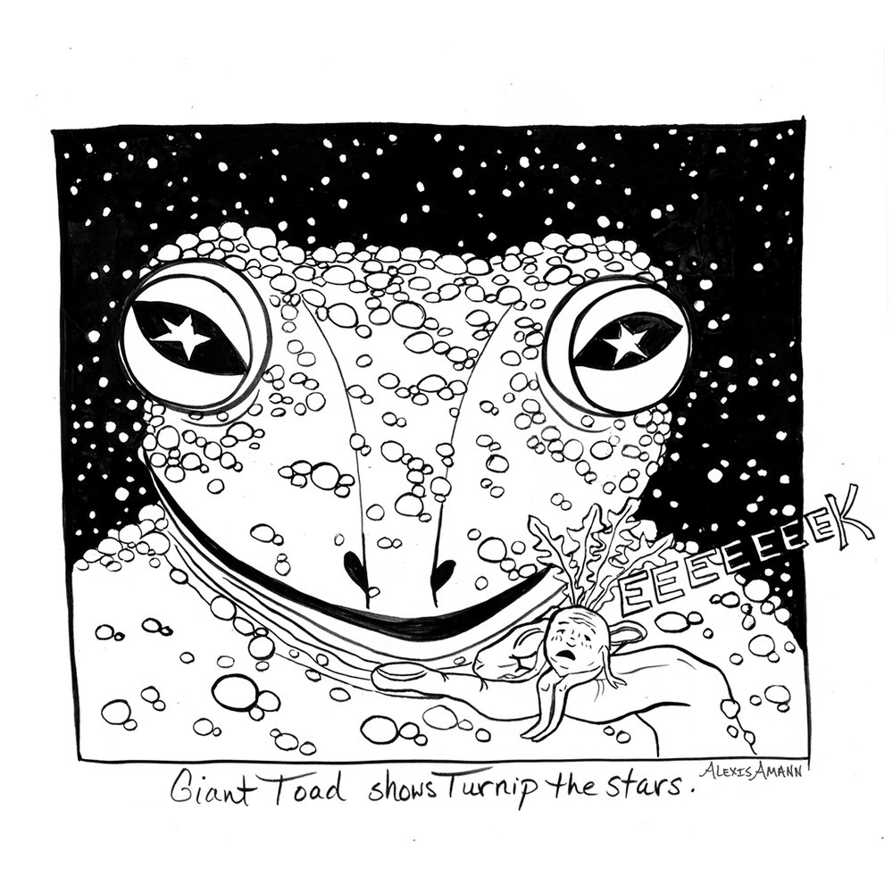9 Giant Toad Shows Turnip the Stars 72wm.jpg