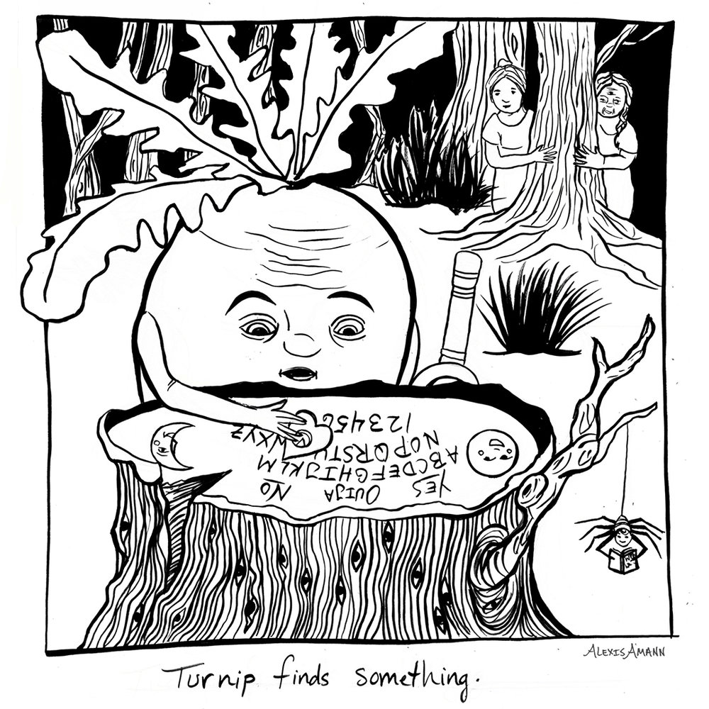 15 Turnip Finds Something 72 wm.jpg