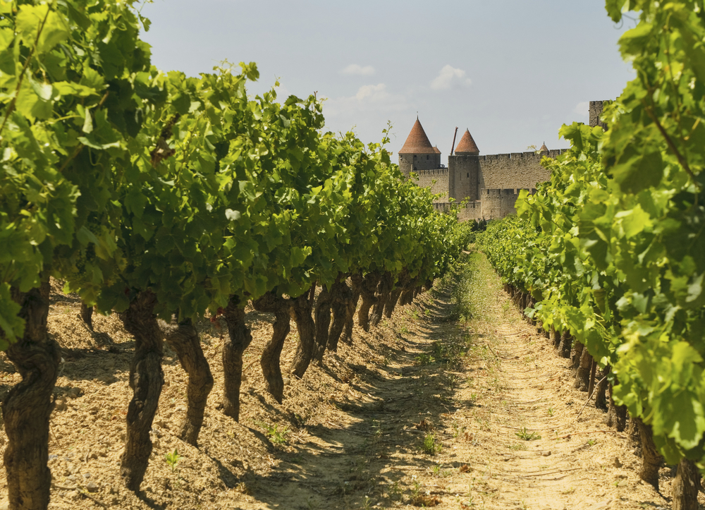 Locals consider the Languedoc region, home to the Medieval town Carcassonne, to be the real South of France.