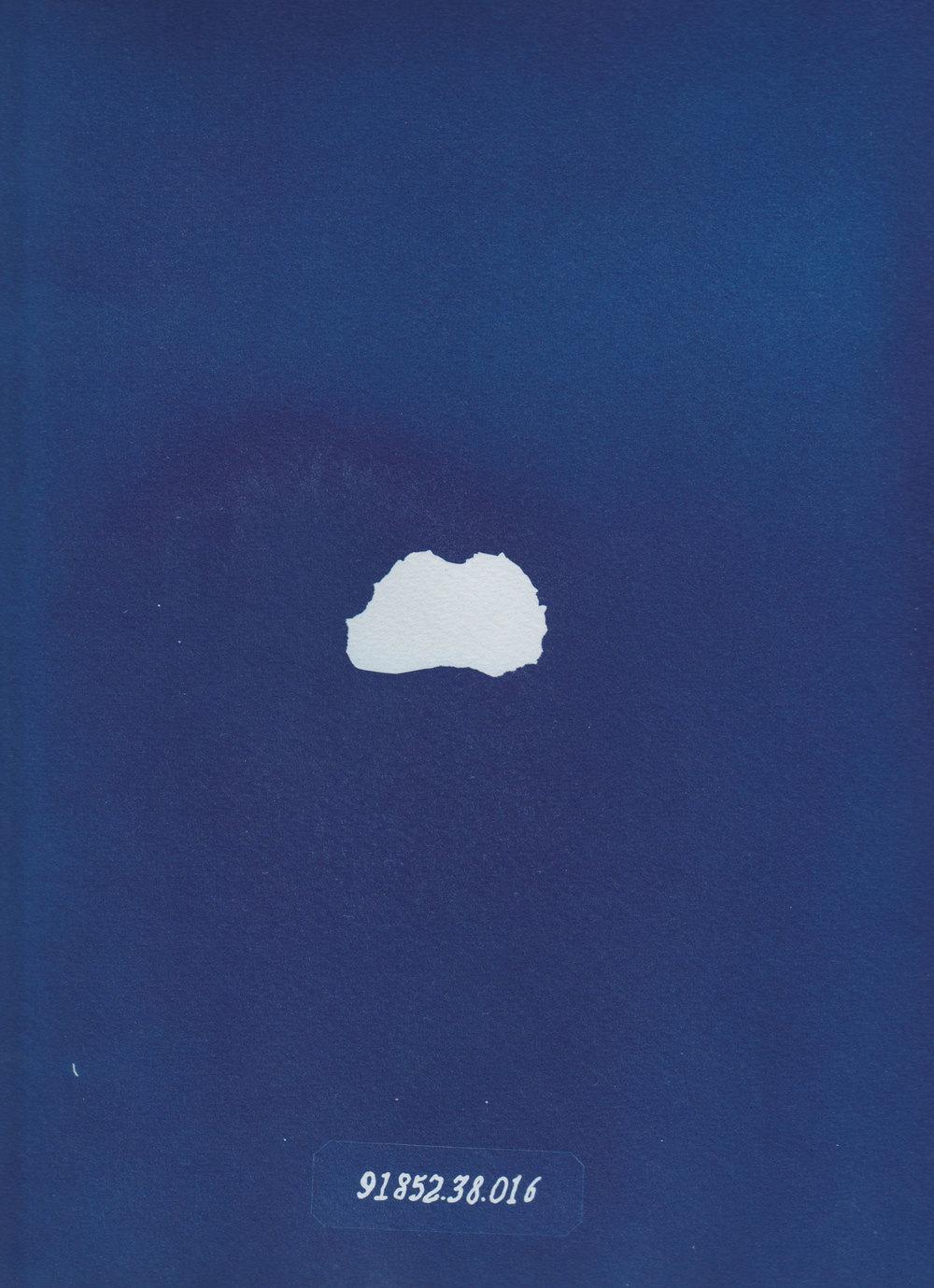 Klumpen i sig, cyanotype, 2014