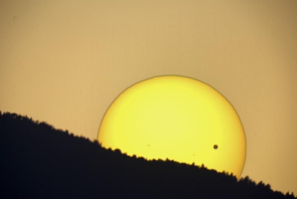 Venus Set Official.jpg