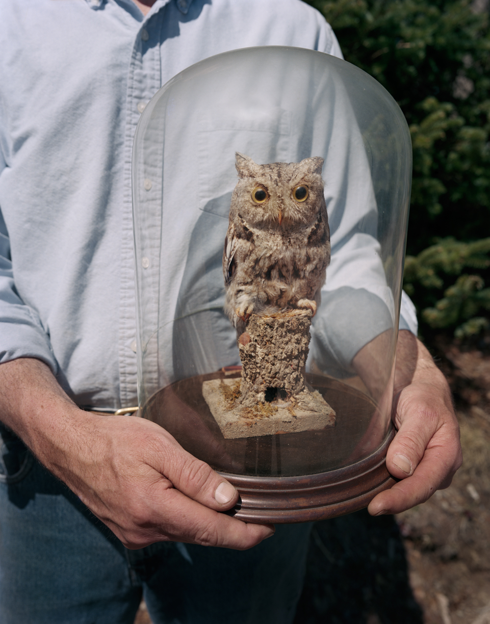 Dad and Owl