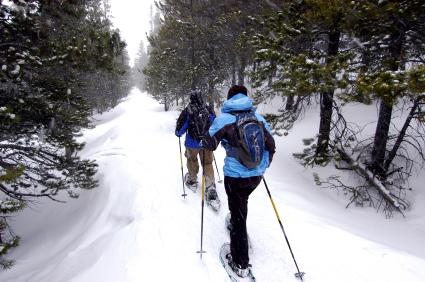 snowshoehiking.jpg