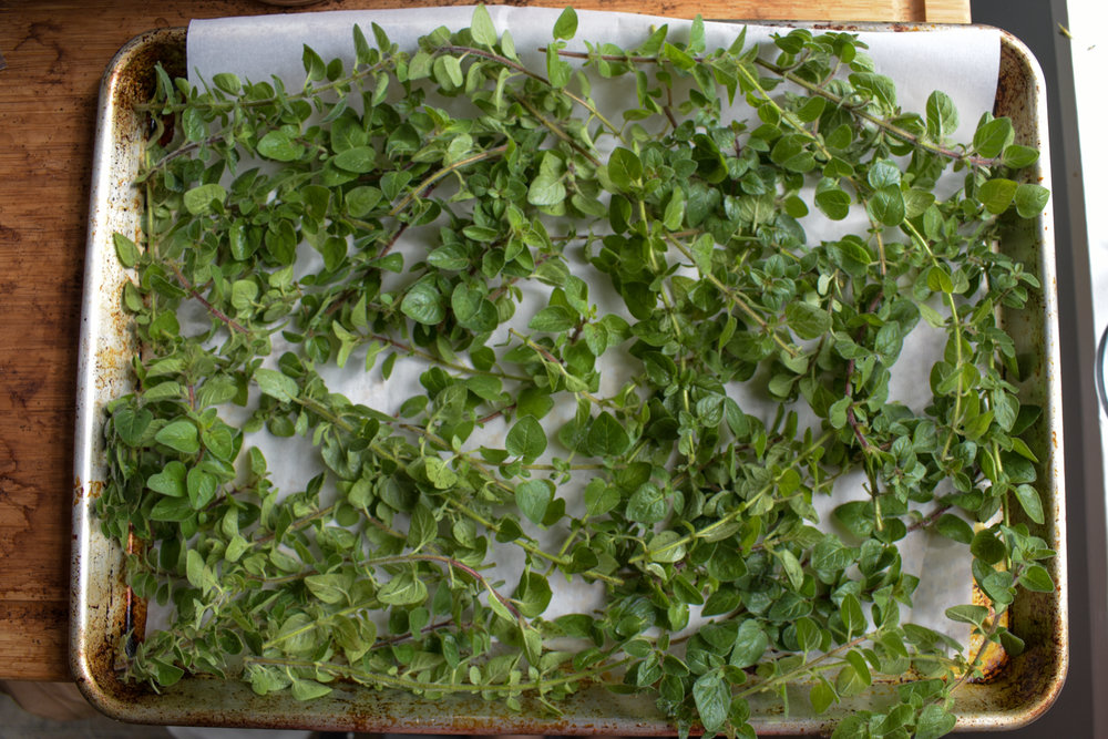 Oven-dried herbs