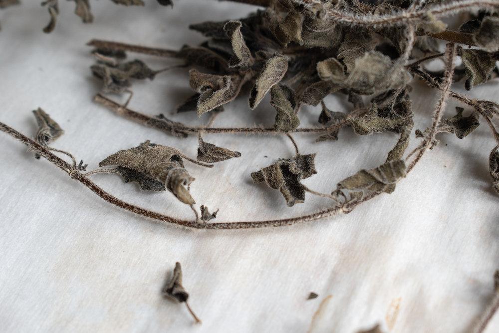 Oven-dried oregano