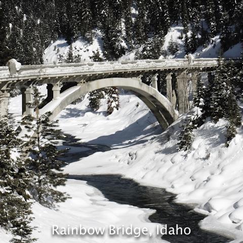 coaster-rainbow-img_8704-bridge-sqr-2