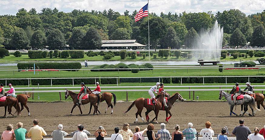 horses_top.jpg