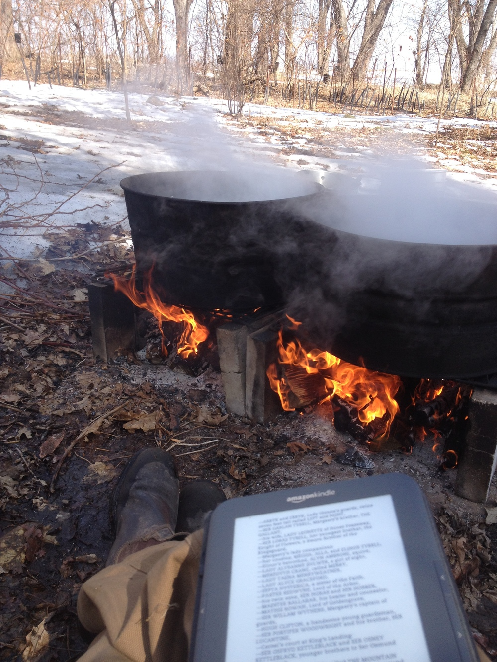 Once you have about 30-45 gallons of sap, it's time to boil! This is usually an all day process and must be done outside over a fire or with a fancy evaporator. On average, it takes about 43 gallons of sap to get 1 gallon of syrup! Sap is usually 2-5% sugar depending on the species and maple syrup isn't considered maple syrup until the water is evaporated until it's about 66% sugar.