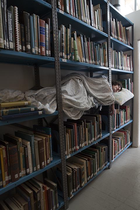 Library Slumber   2013