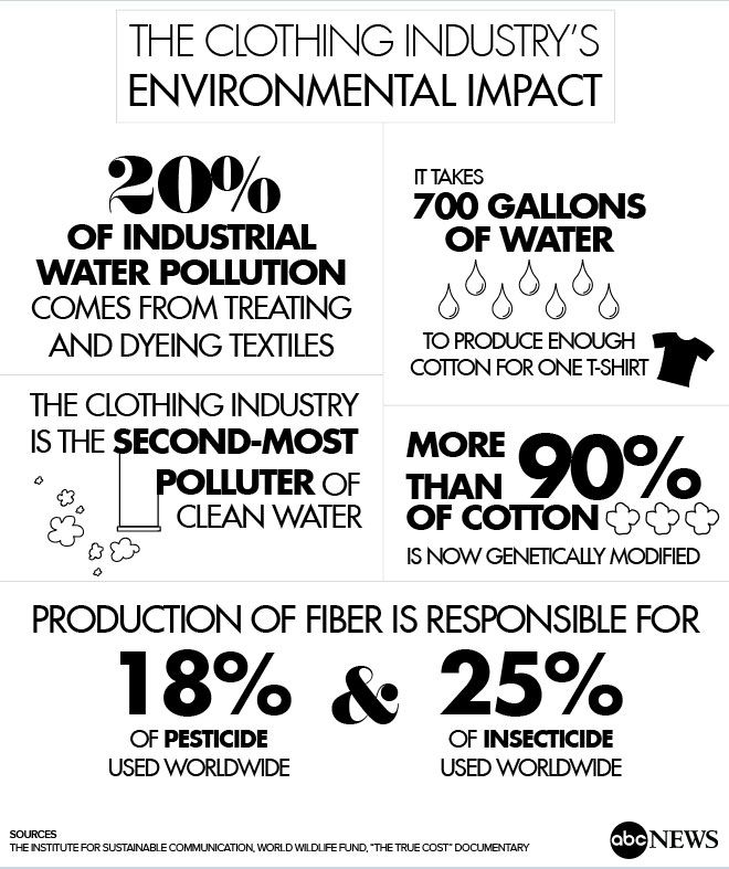 SUSTAINABLE IN VINTAGE- fashion pollutant facts.jpg