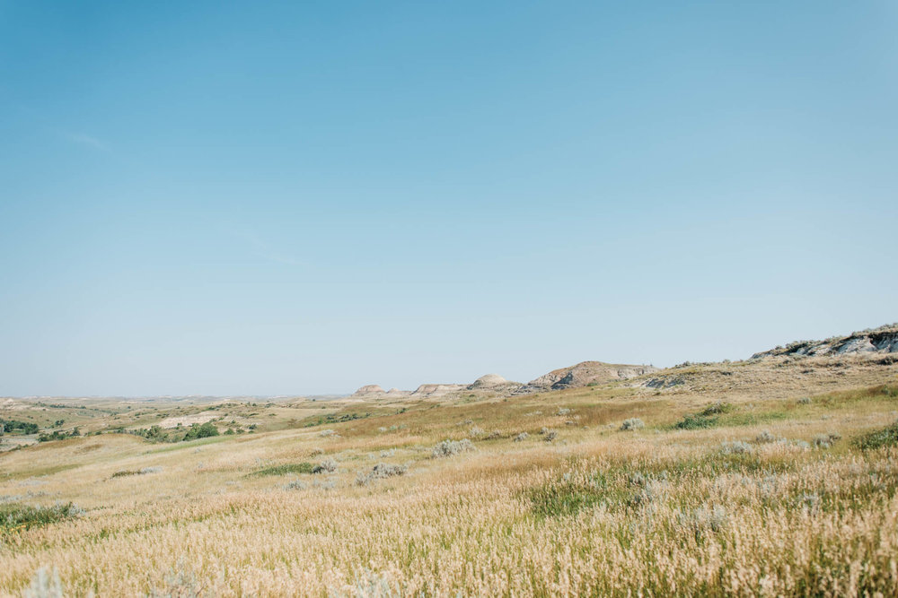 Teddy Roosevelt National Park Erika Aileen Destination Wedding Photographer