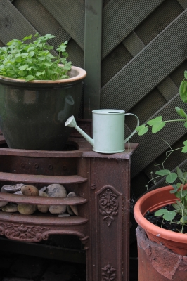 Grow Your Own Italian Herb Garden