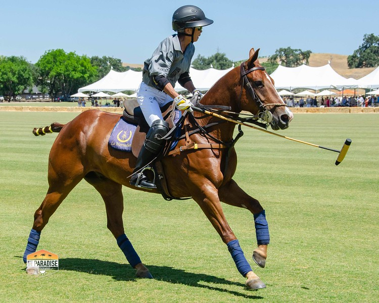 2018 SYV Polo - match - low res-0134.jpg
