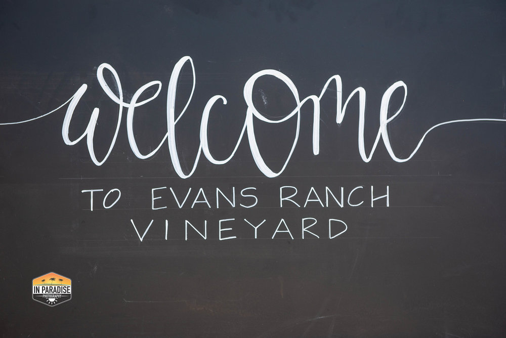 20180908 Evans Ranch - setting-2702.jpg