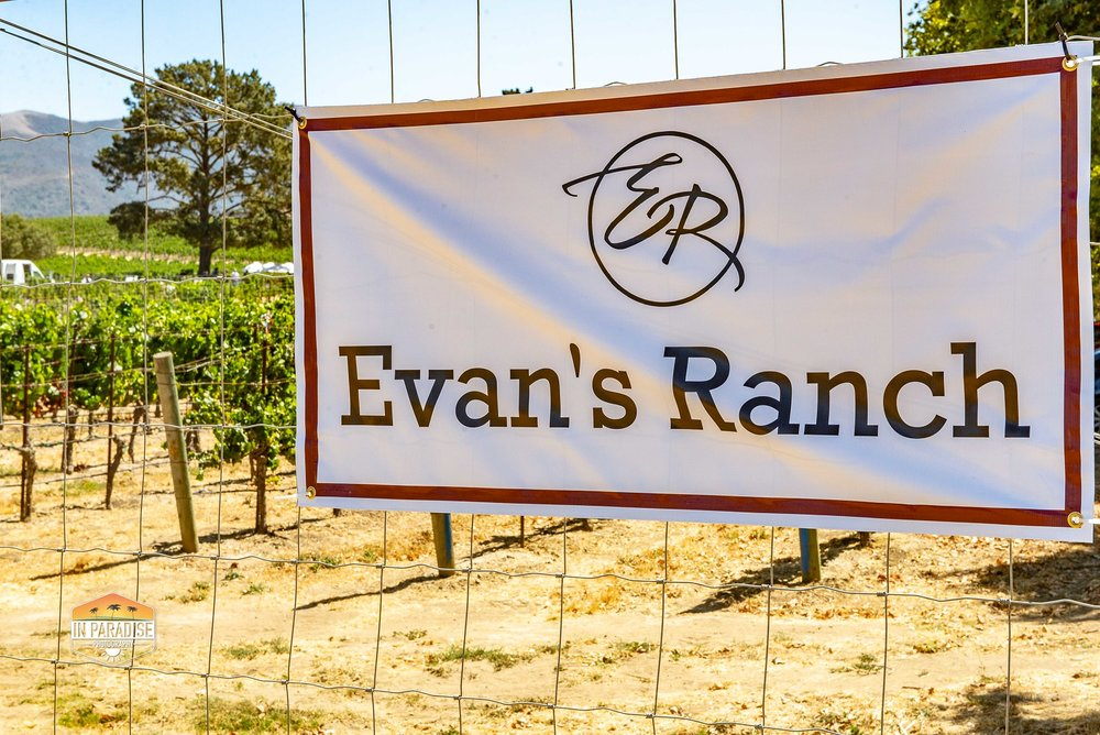 20180908 Evans Ranch - setting-3342.jpg