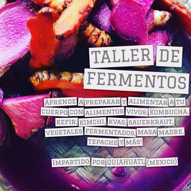 #taller de #fermentos #probioticos en #puntadeldiablo @solomaredeldiablo no te lo pierdas!!