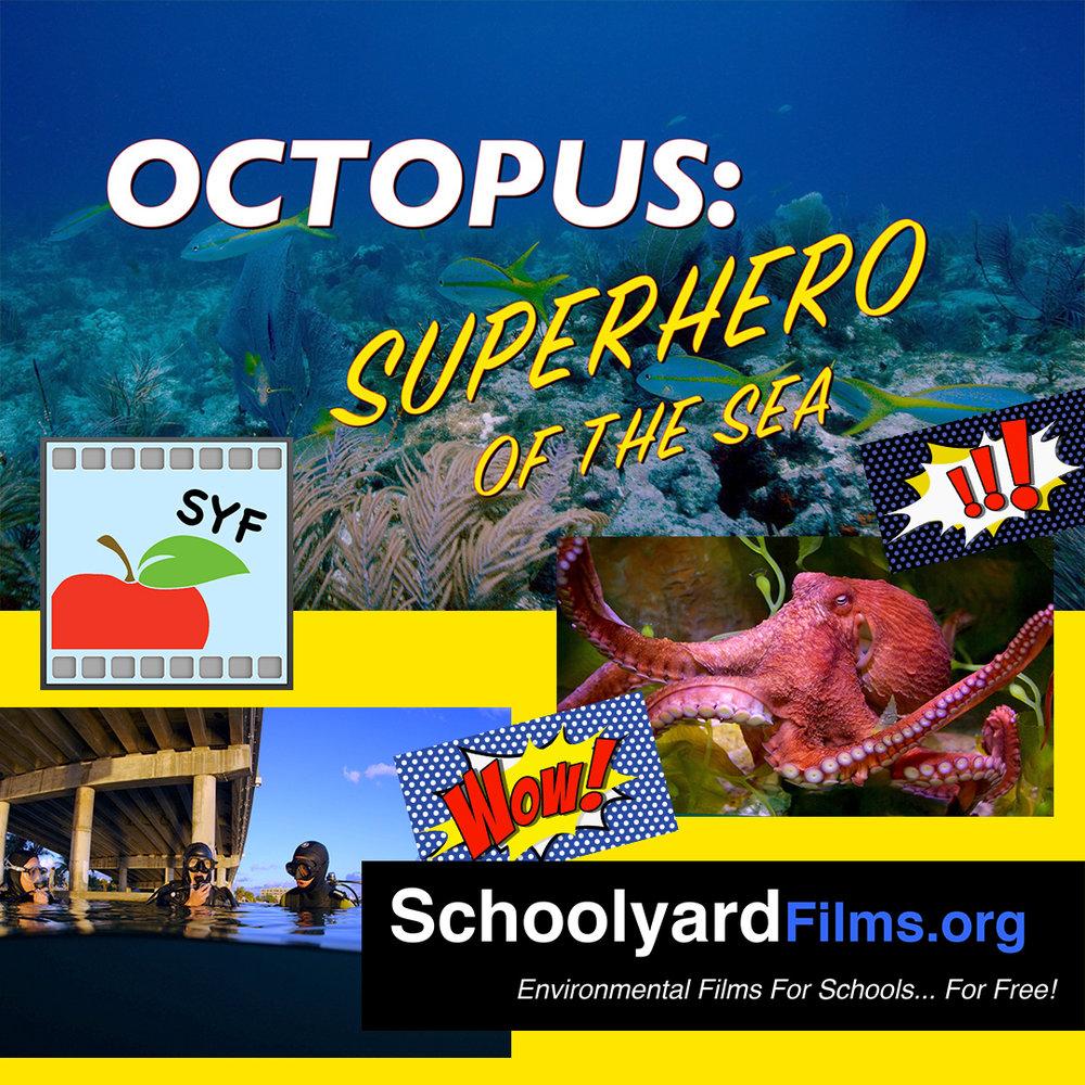 15 SYF OCTO Album Art SQ 1080x.jpg