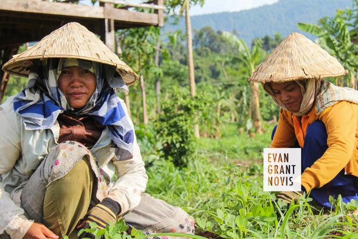 Laos21.jpg