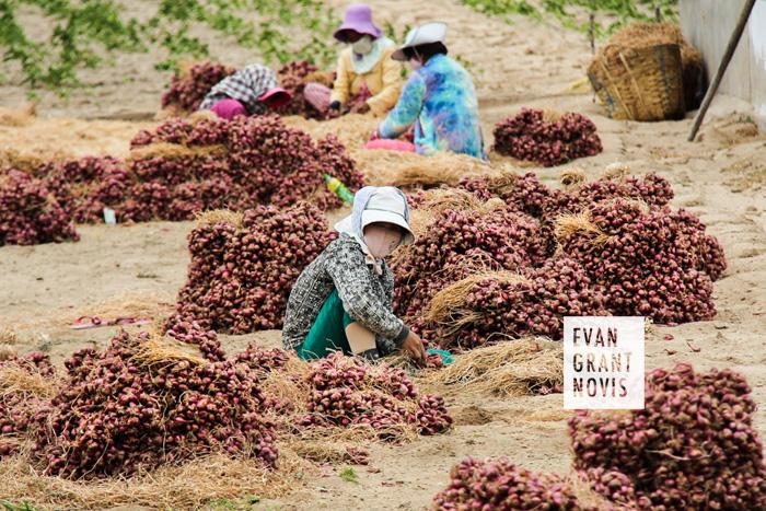 Phang Rang, Vietnam