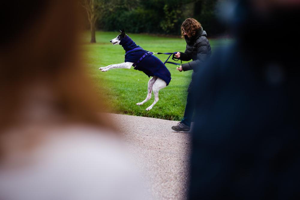 Engagement Wedding Photography - Jo & Ashley-17.jpg