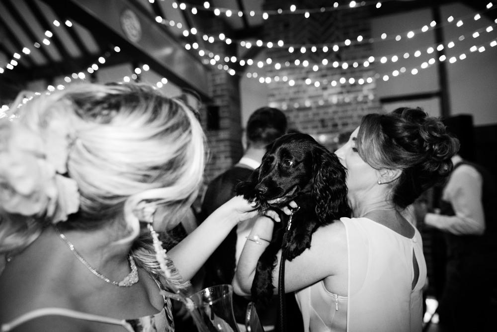 lainsto house wedding photographer