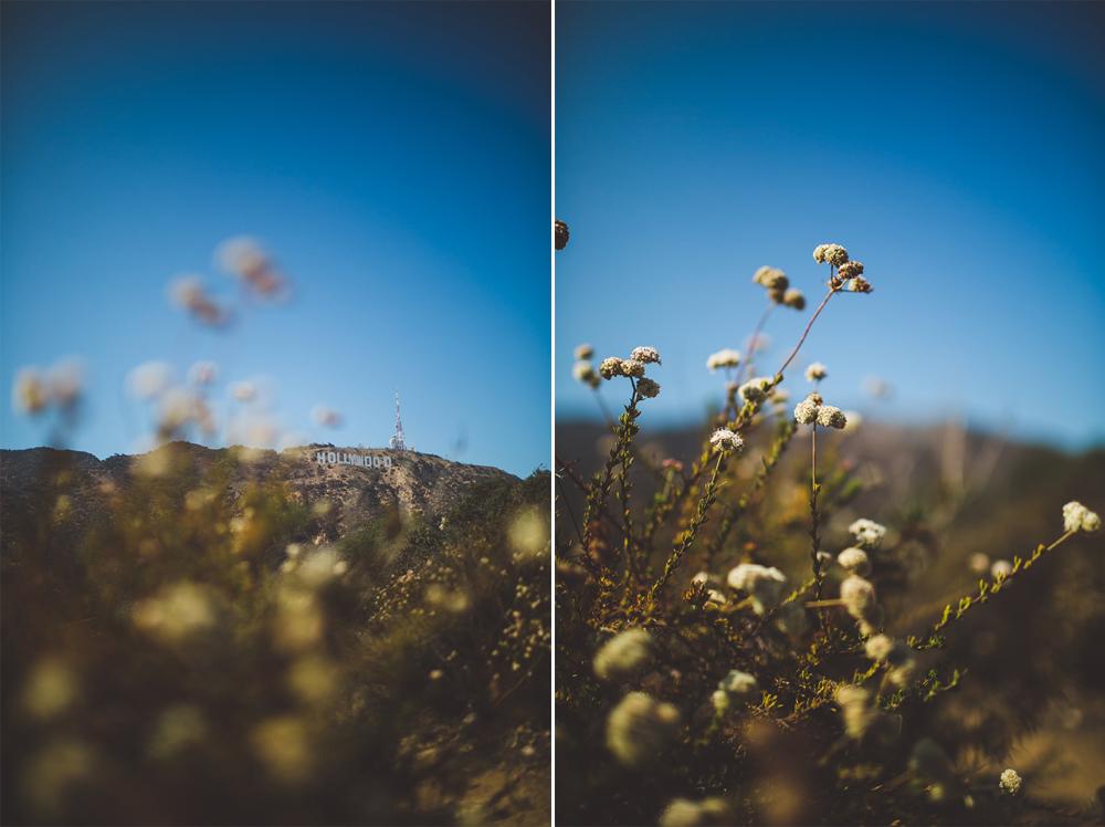 julia-trotti_LA-065.jpg