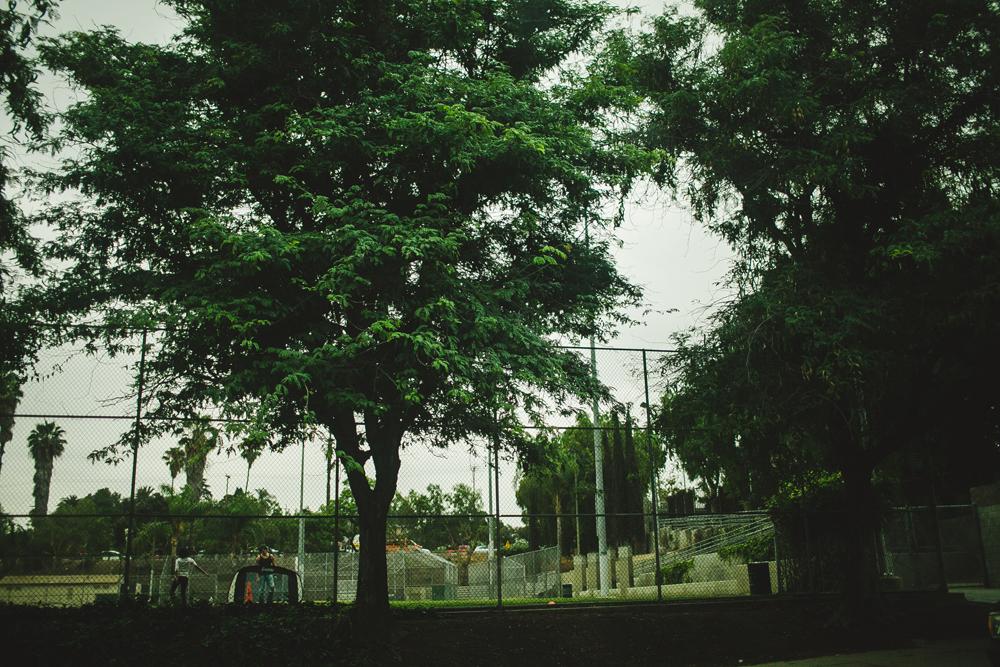 julia-trotti_LA-084.jpg