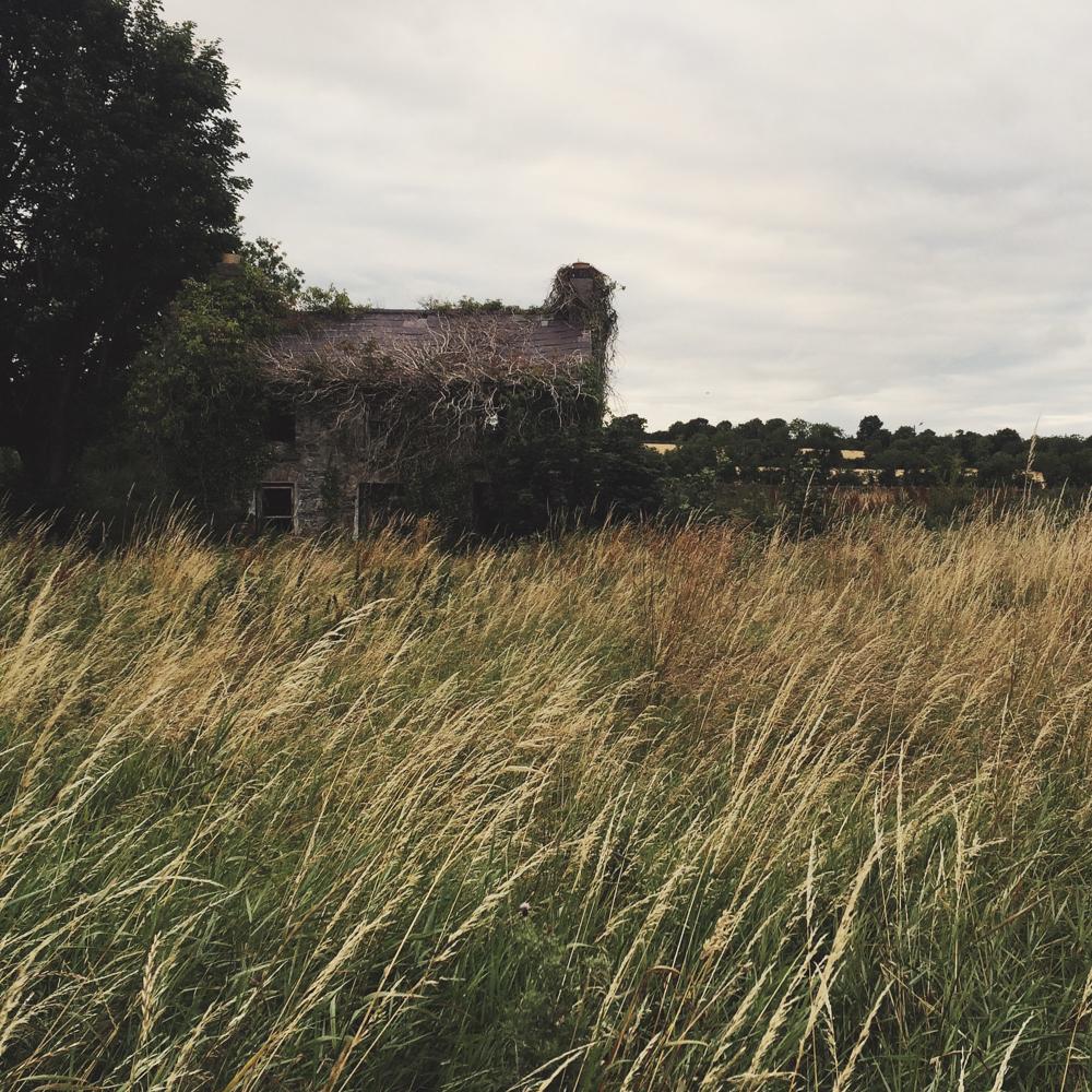 julia-trotti-ireland instagram diary_19.jpg