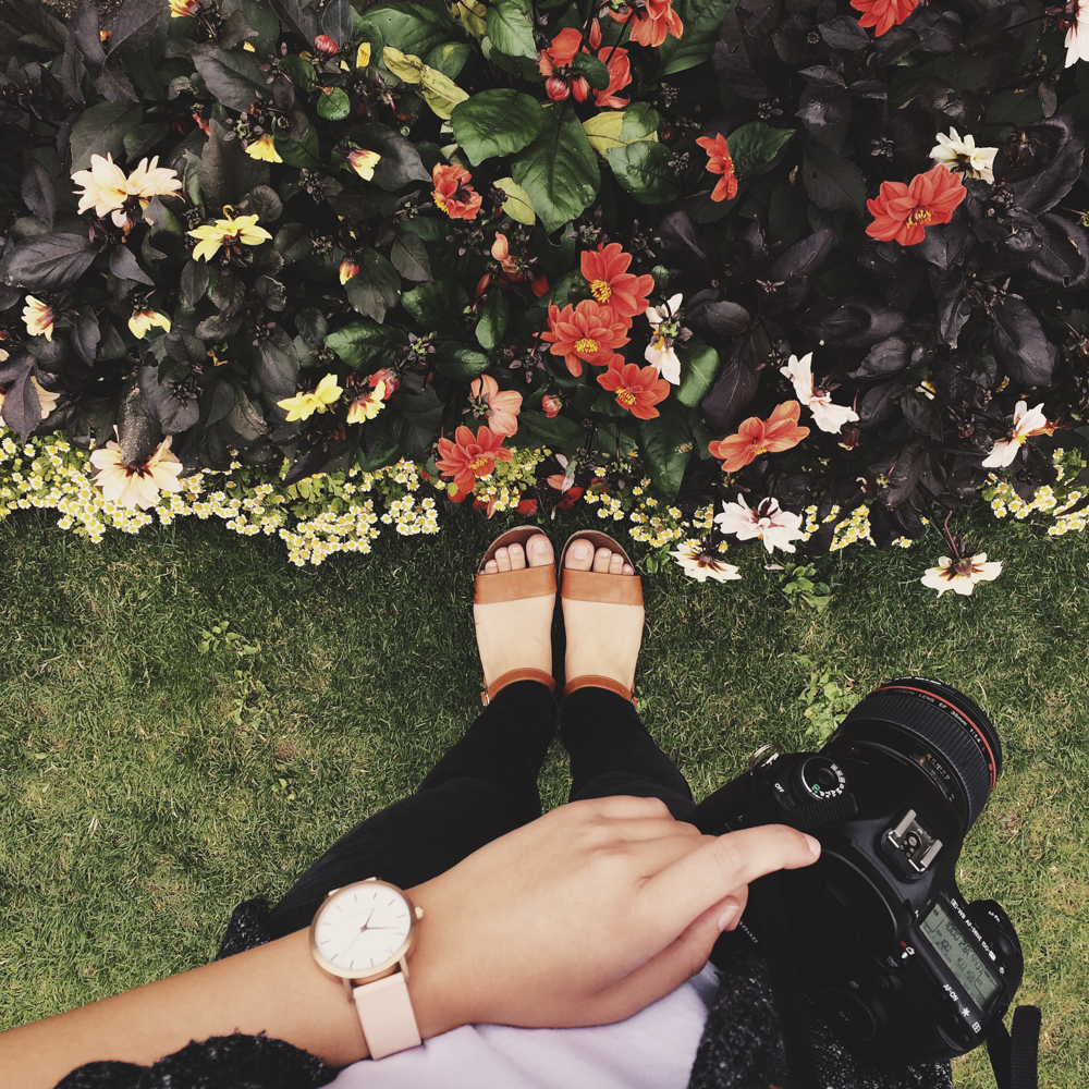 julia-trotti-ireland instagram diary_71.jpg